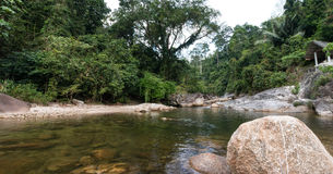 River in jungle, Thailand Stock Photography