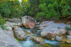 River in jungle of Vietnam stock image