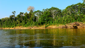 River. In jungles of Peru Stock Photos