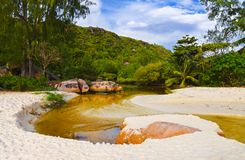 River in jungles at Seychelles stock photos