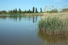 River Kalaly Royalty Free Stock Photos