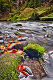 River Kamenice in autumn, Bohemian Switzerland Royalty Free Stock Images
