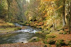 River Kamenice Royalty Free Stock Photos