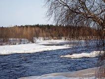 River in Karelia stock image