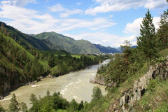 River Katun Royalty Free Stock Photography
