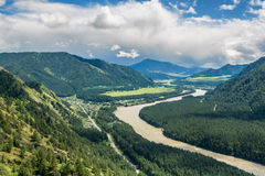 River Katun in Altai Republic, Russia Stock Image