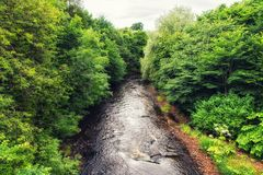 The River Kelvin. With woodland, Glasgow, UK Royalty Free Stock Images