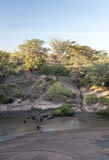 River of kenia Royalty Free Stock Photos