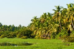 River in Kerala, India Stock Images