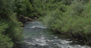 River Krka in Knin stock video footage