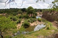 River in Kruger National Park Stock Image