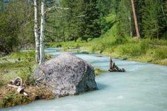 River Kucherla. Trekking in the Altai Mountains Stock Photos