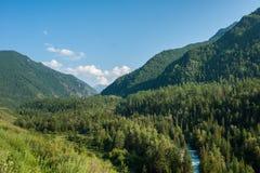 River Kucherla. Trekking in the Altai Mountains Stock Image