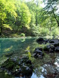 River Kupa spring Royalty Free Stock Image