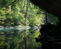 River Kupa spring Stock Photo
