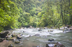 River at La Fortuna Waterfall in Arenal National Park, Costa Rica Stock Images
