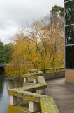 River at La Trobe University Stock Image