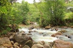 River in Labuan Bajo royalty free stock photos