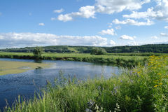 River, land with trees and cloudy sky Royalty Free Stock Images