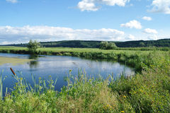 River, land with trees and cloudy sky Stock Photos