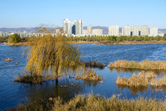 River landscape. The autumn scenery of city and river Royalty Free Stock Photo