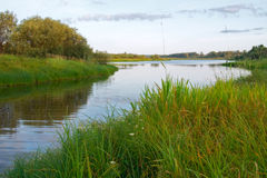 River landscape. The small river flows through water-meadows royalty free stock photography