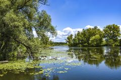 River landscape on a beautiful summer day. royalty free stock photos
