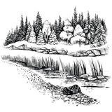 River landscape with conifer forest. Vector illustration. Royalty Free Stock Photography