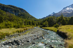 River landscape with green forest and mountain Stock Image