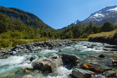 River landscape with green forest and mountain Royalty Free Stock Image