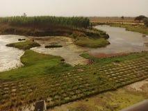 River landscape green India. Meander Stock Image
