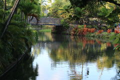 River landscape. On the Hawaii island Stock Photo