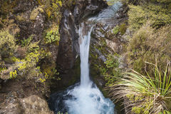 River landscape in New Zealand Stock Photo