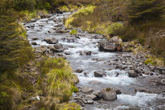 River landscape in New Zealand Royalty Free Stock Photos