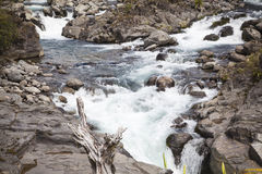 River landscape in New Zealand Stock Images