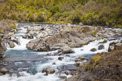 River landscape in New Zealand Stock Photos