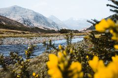 River through the landscape of Scotland. This river you can find in the south of Isle of Skye in Scotland royalty free stock photos