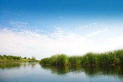 River landscape in summer sunny day Stock Photography
