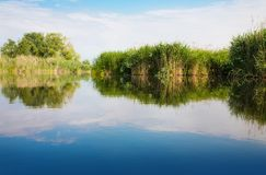 River landscape in summer sunny day Royalty Free Stock Photo