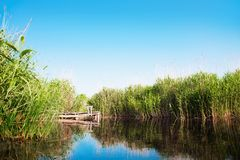 River landscape in summer sunny day Stock Photo