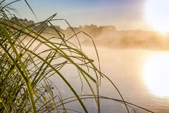 River landscape with sunrise. Beautiful sunrise on river bank in early morning Stock Photos