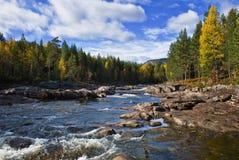 River landscape. Landscape surrounding a river at autumn Royalty Free Stock Image