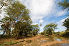 River Landscape in Tsavo National Park. Kenya Royalty Free Stock Images