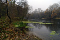 River landscape,Ukraine Stock Image