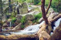 River landscape with waterfall and a fallen tree trunk inside the water royalty free stock image