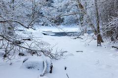 River landscape in winter Royalty Free Stock Photography
