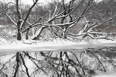 River landscape by winter Royalty Free Stock Photos