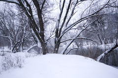 River landscape in winter Royalty Free Stock Images