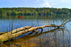 River landscape. Yadkin river landscape at the Morrow Mountain State Park with fallen tree and red boat Royalty Free Stock Photography
