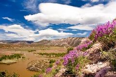 River-Landschaft Stockbild